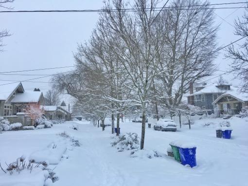 january-2017-snowstorm